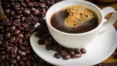 Загрозени половина видови кафе во светот