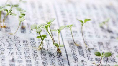 Најнов изум – Весници коишто се претвораат во растенија