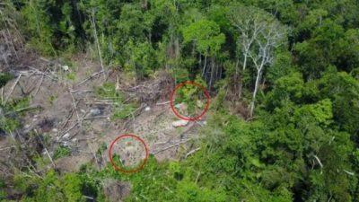 Дрон сними изолирано амазонско племе во Бразил