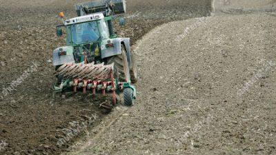Штети во земјоделството: Сушата во Германија изгоре повеќе милијарди евра