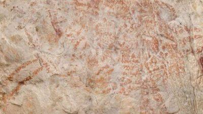 Најстарата слика од животни е пронајдена во пештера во Индонезија