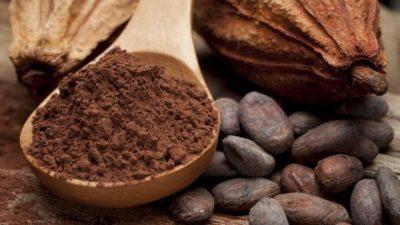 Луѓето користеле какао уште пред 5.400 години
