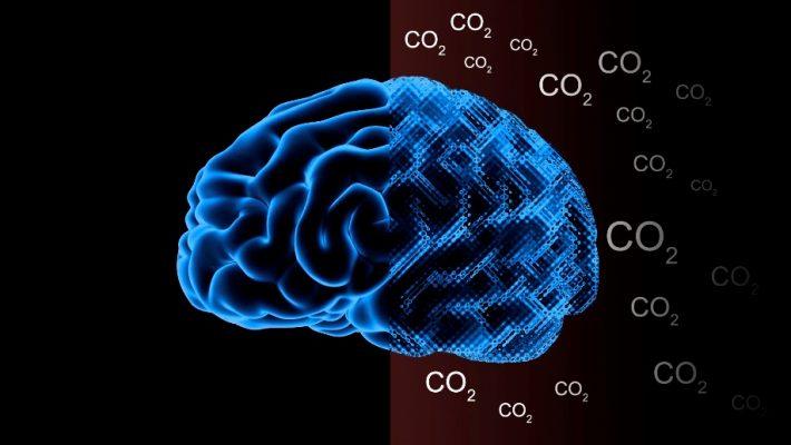 CO2-brain-e1546547061902.jpg