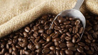 Лоша вест за љубителите на црниот напиток: Кафето полека исчезнува