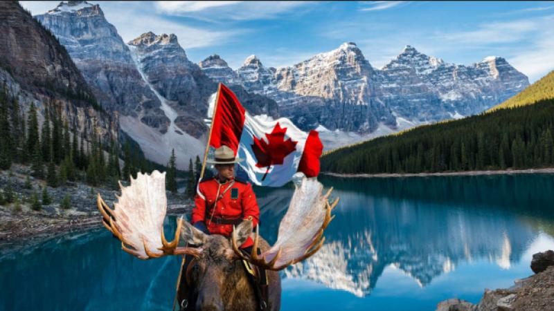 Сакате да живеете и да работите во Канада? Во …