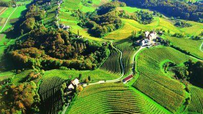 Паника во Словенија: Фармерите остануваат без земјиштата, Австријците купуваат сè!