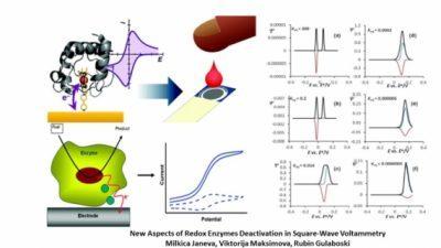 Доцент и асистент-докторанд од УГД публикуваа значајно теоретско решение за деактивацијата на редокс ензимите