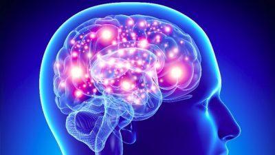 Со електростимулација на мозочните фреквенции до подобра меморија