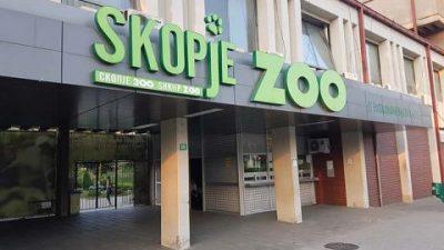 Во Зоолошката градина во Скопје пристигнуваат нови животни