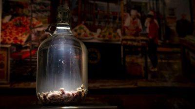 Ѕирнете во Музејот на одвратна храна во Шведска