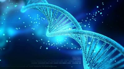 Гугл сака со генетски инженеринг да ги направи луѓето имуни на срцеви болести