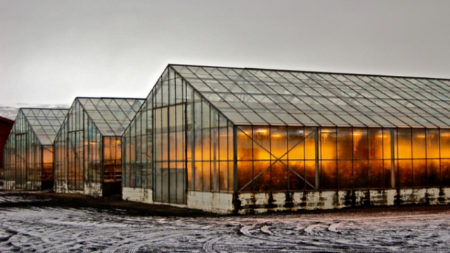 iceland-greenhouse-e1559763187146.png
