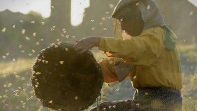"""""""Медена земја"""" се враќа без Оскарите, статуетките кај """"Американска фабрика"""" и """"Паразит"""""""