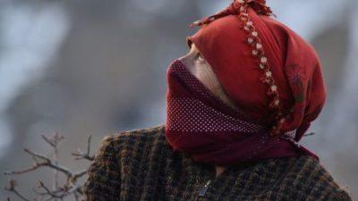 Македонија најпребарувана локација на Гугл поврзана со Оскарите