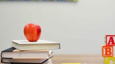 Естонија им ги понуди своите образовни дигитални алатки на другите земји како поддршка поради коронавирусот