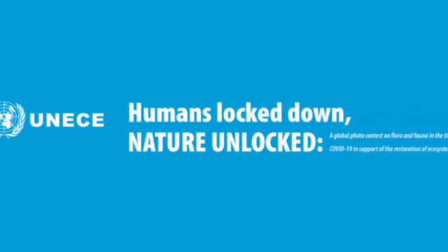 HUMANS-LOCKED-DOWN-NATURE-UNLOCKED-PHOTO-CONTEST.png