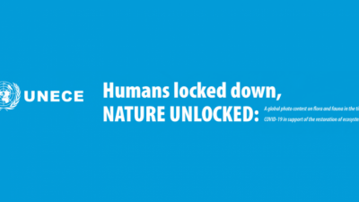 HUMANS LOCKED DOWN, NATURE UNLOCKED PHOTO CONTEST