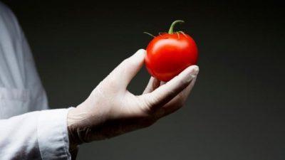 Овие овошја и зеленчуци содржат штетни материи — некои нивни делови не смеете да ги јадете
