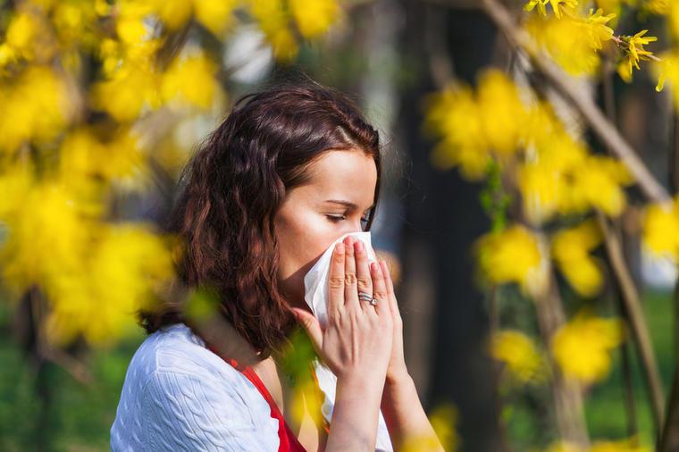 Gradinarski-lek-Zelenchuk-protiv-alergii.jpeg
