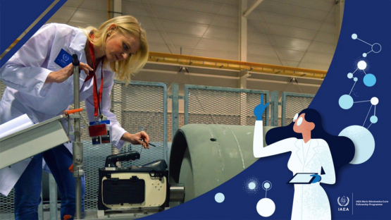 IAEA-Marie-Sklodowska-Curie-International-Fellowship-Programme-in-Austria.png