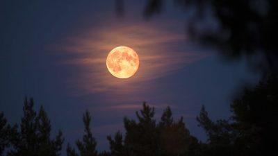 НАСА: Месечината секоја година се оддалечува од планетата Земја по 2,5 сантиметри