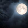 Оваа година не очекува редок небесен феномен