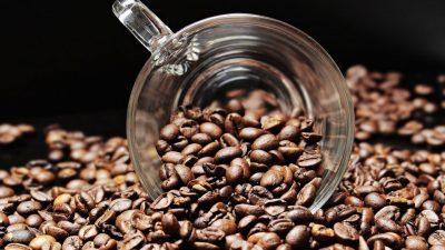 Со помош на кафето можете да се ослободите од комарците