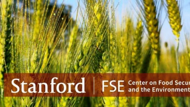FSE-Postdoctoral-Fellowship-Now-accepting-applications-for-Fall-2021.jpg