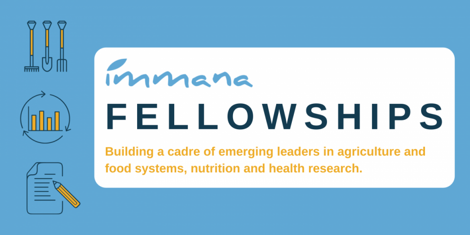 IMMANA-Fellowships-for-Emerging-Leaders-in-Agriculture-Nutrition-and-Health-Research.png
