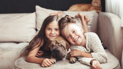 Еве зошто е добро децата да растат со куче или мачка