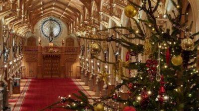 Вака изгледа величествената елка на британското кралско семејство