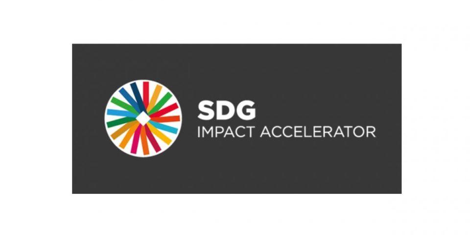 Call-for-Startups-SDG-Impact-Accelerator-SDGia-Programme-2021.jpg