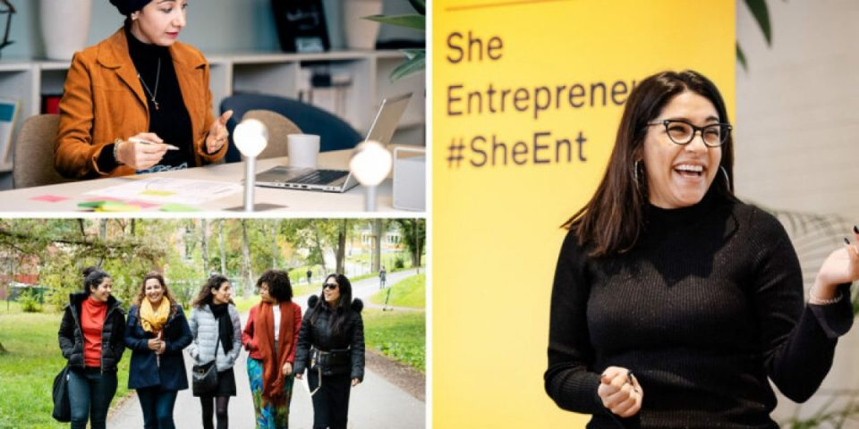 Swedish-Institute-She-Entrepreneurs-Leadership-Program-2021-for-Women-Entrepreneurs-in-MENA.jpg