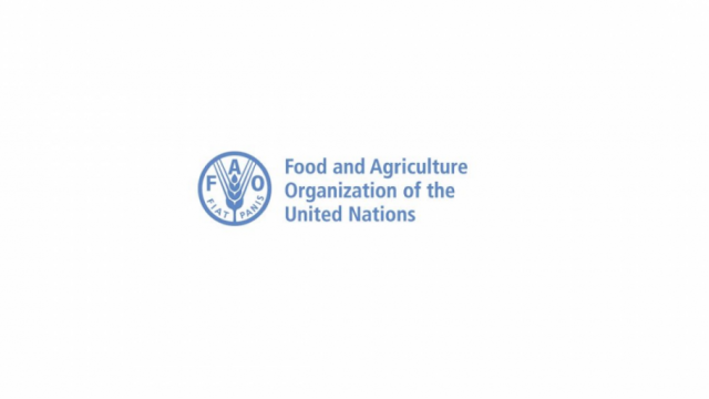 Food-and-Agriculture-Organization-of-the-United-Nations-UN-FAO-Fellows-Programme-2021.png