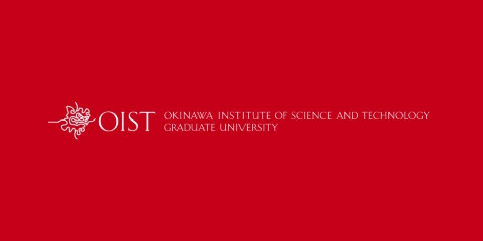 OIST-RESEARCH-INTERNSHIP-PROGRAM.jpg