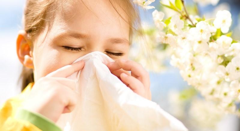 So-proletta-dojdoa-i-alergiite-Vazni-soveti-za-lugjeto-koi-go-imaat-ovoj-problem.jpg